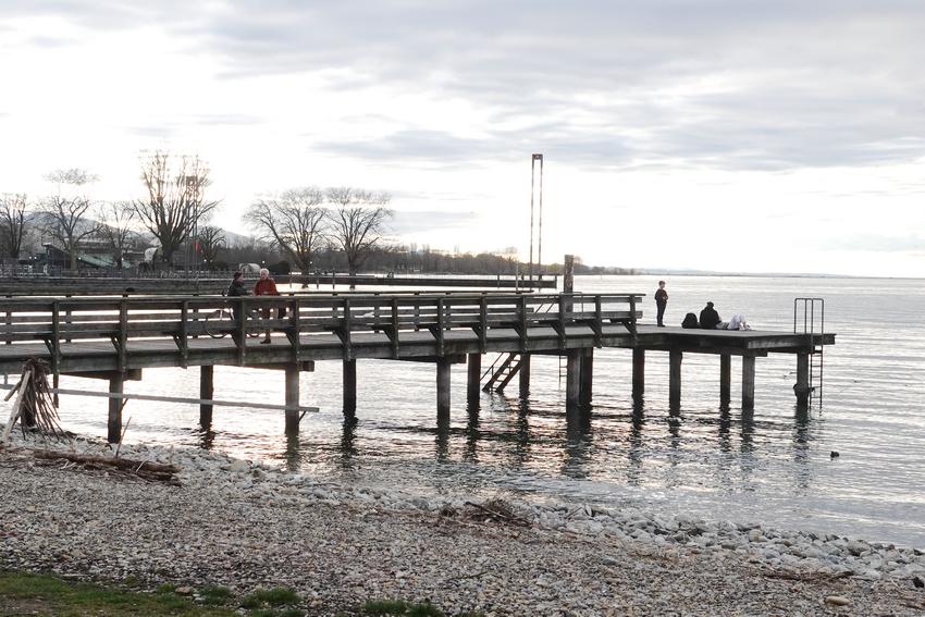 """Antrag: Obertshausen wird """"Sicherer Hafen"""""""